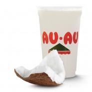 Suco Coco com Leite 500ml